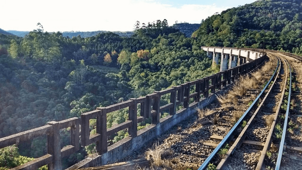Descubra el panorama del transporte ferroviario en el mundo