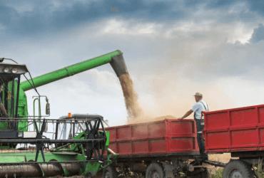 Como evitar perdas no transporte de grãos!