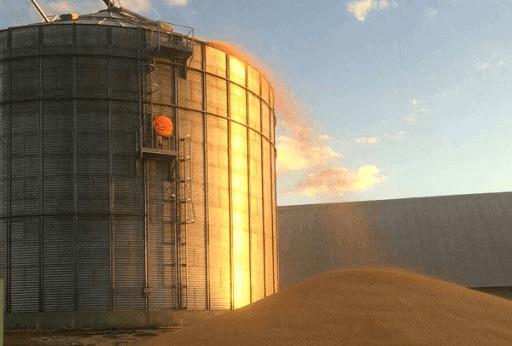 Armazenamento inadequado durante o transporte de grãos